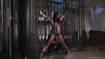 امرأة سمراء شابة مربوطة يدها وقدمها إلى القفص
