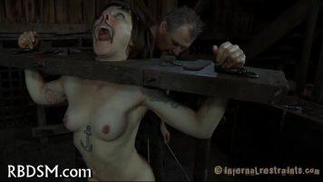 الكلبة مقيدة يدها وقدمها في جهاز تعذيب تريد أن تكون